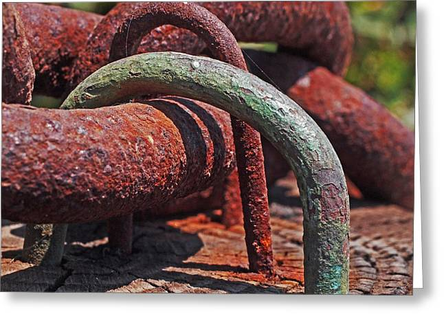 Snaking Rust  Greeting Card by Rona Black