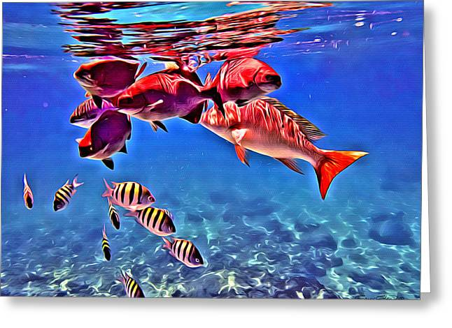Mutton Snapper Greeting Cards - Snapper Feed Greeting Card by Anthony C Chen
