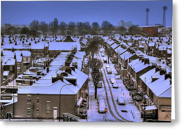 Snow 2 Greeting Card by Terry Walters