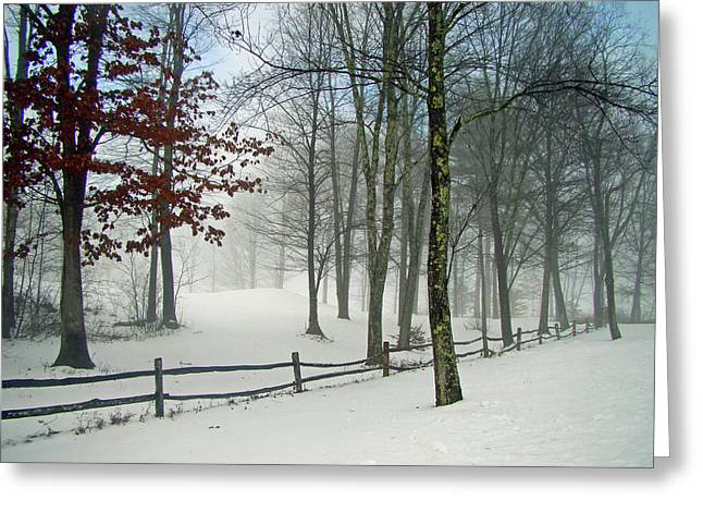 Snow Begins Greeting Card by Betsy Zimmerli
