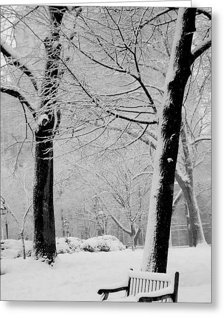Washington Square Park Greeting Cards - Snow Bench Greeting Card by Andrew Dinh