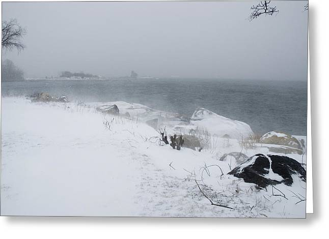 Groton Greeting Cards - Snow Blowing In The Wind On The Shore Greeting Card by Todd Gipstein