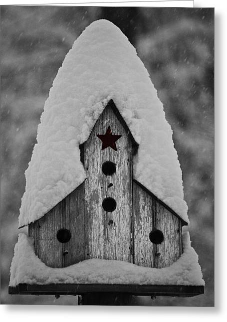 Blizzard Scenes Greeting Cards - Snow Covered Birdhouse Greeting Card by Teresa Mucha
