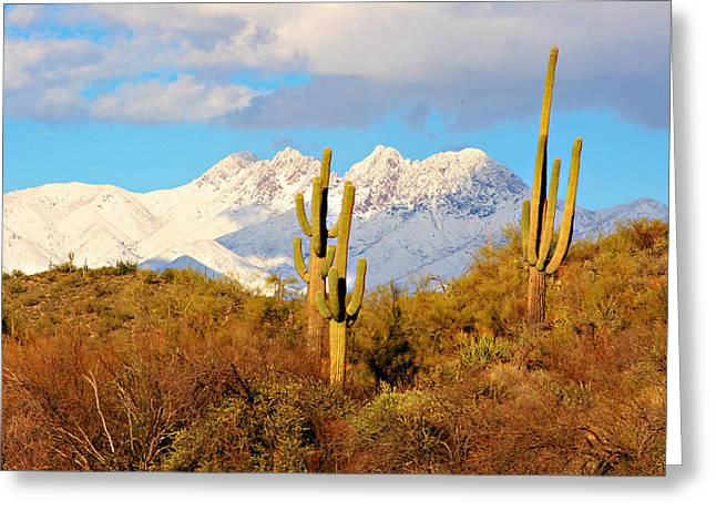Desert Greeting Cards Greeting Cards - Snow Covered Four Peaks Greeting Card by James BO  Insogna