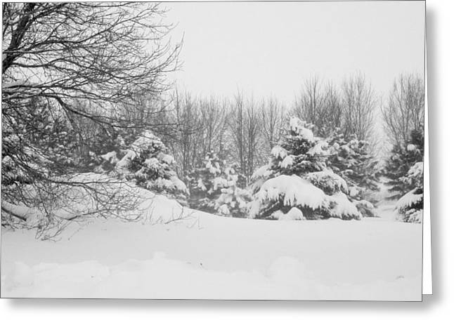 Snowstorm Greeting Cards - Snow Covered Wonderland Greeting Card by Julie Lueders