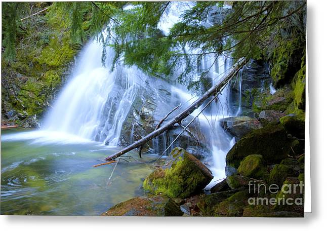 Lush Green Greeting Cards - Snow Creek Falls Greeting Card by Idaho Scenic Images Linda Lantzy