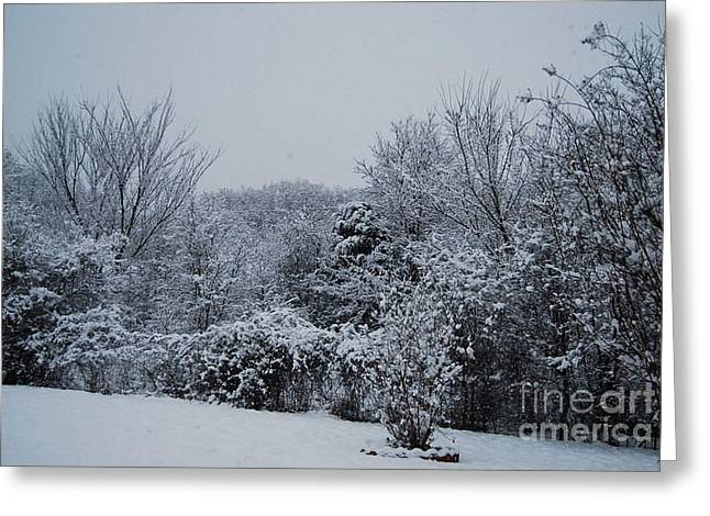 Snow Tree Prints Greeting Cards - Snow Day  Greeting Card by Ruth  Housley