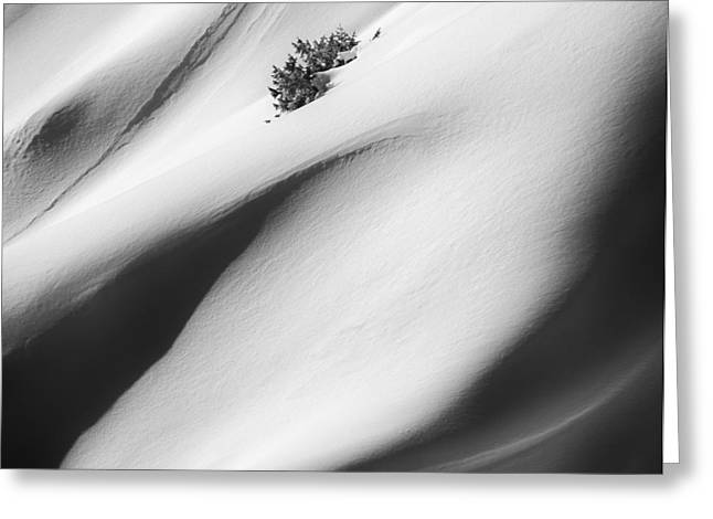Snow Drift Greeting Card by Joseph Smith