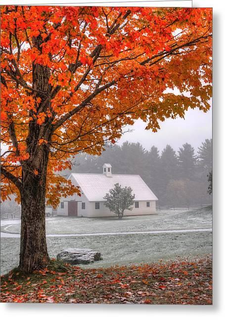 Snow Dust Over Autumn Foliage Greeting Card by Joann Vitali