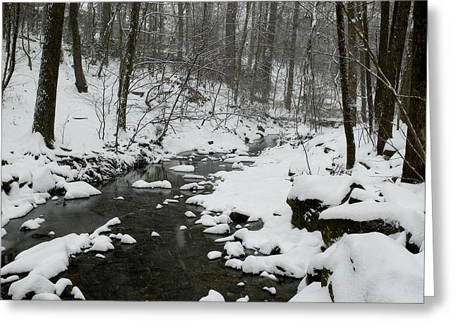 Arlington Greeting Cards - Snow Falling On The Banks Of A Park Greeting Card by Todd Gipstein