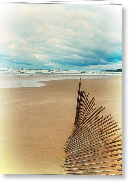 Snow Drifts Digital Art Greeting Cards - Snow Fence and Seagulls Greeting Card by Michelle Calkins