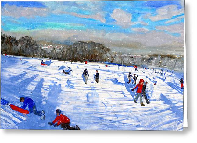 Snow Flurries Greeting Card by Andrew Macara