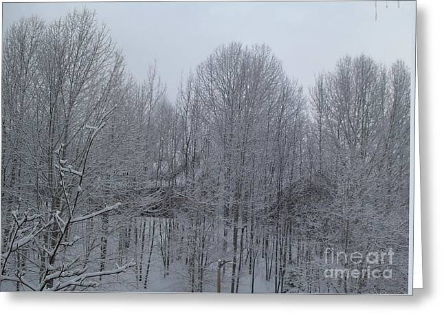 Winter Storm Greeting Cards - Snow Forest Greeting Card by Gina Sullivan