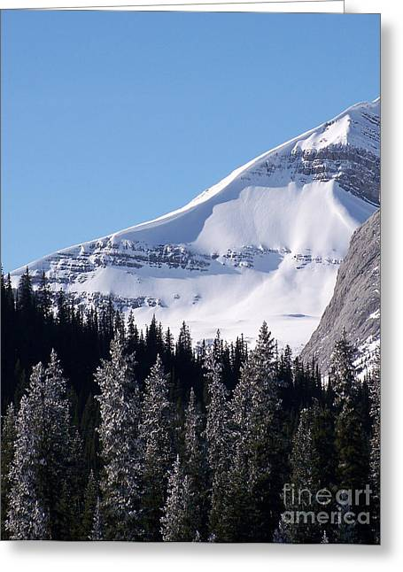 Drifting Snow Greeting Cards - Snow Ledge Greeting Card by Greg Hammond