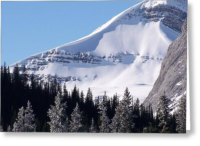 Snow Ledge Greeting Card by Greg Hammond