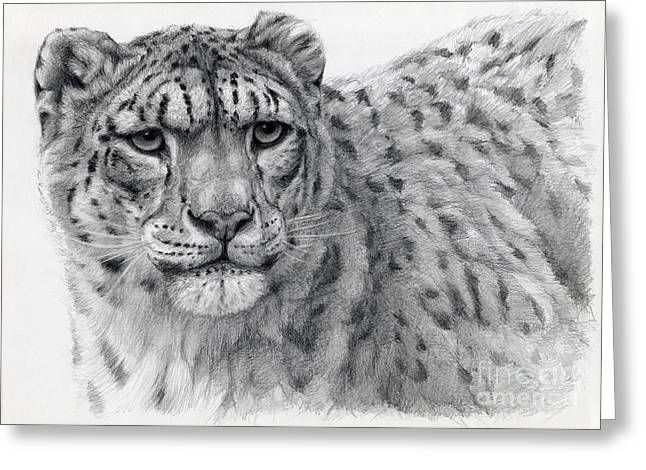 Cat Drawings Greeting Cards - Snow Leopard Portrayal Greeting Card by Svetlana Ledneva-Schukina