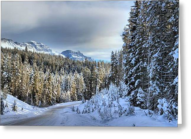 Snow On The Bow Valley Parkway Greeting Card by Adam Jewell
