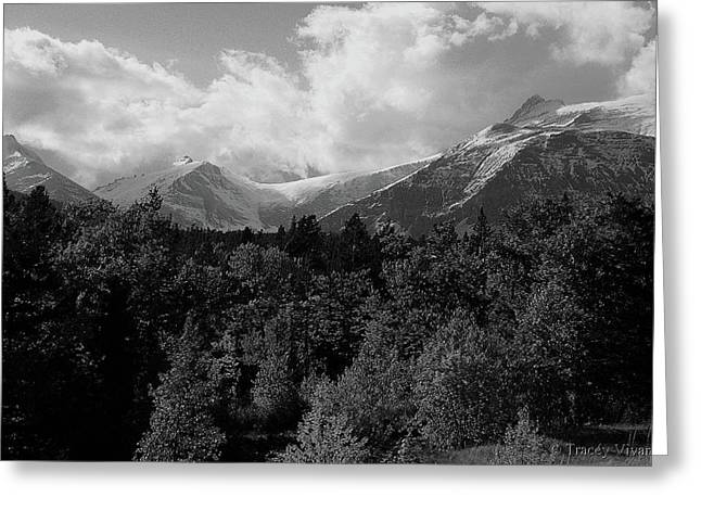 Snow Scene Landscape Greeting Cards - Snow on the Mountains Greeting Card by Tracey Vivar