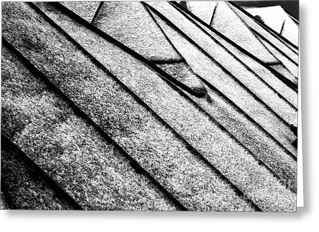 Salzburg Greeting Cards - Snow on the Roof mono Greeting Card by John Rizzuto