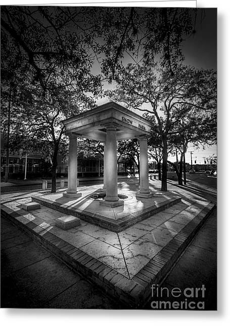 University Of Tampa Greeting Cards - Snow Park b/w Greeting Card by Marvin Spates