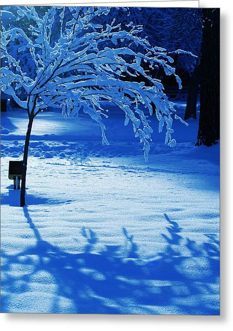 Spokane Greeting Cards - Snow Shadows Greeting Card by Ben Upham