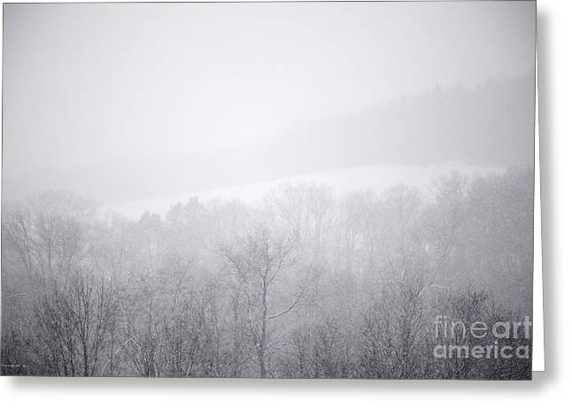 Snowy Evening Greeting Cards - Snowbound Greeting Card by John Stephens