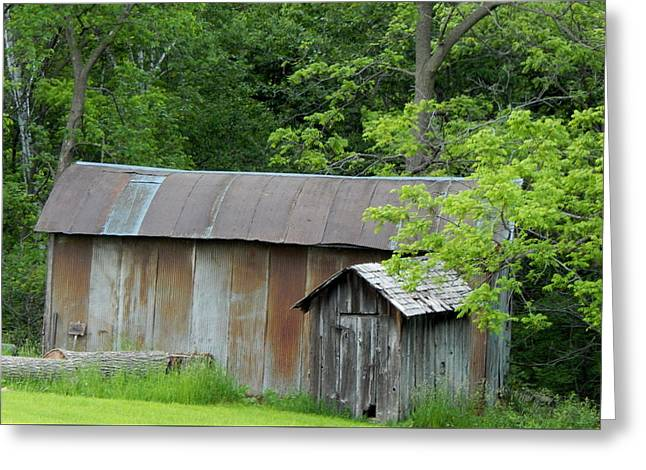 Outbuildings Greeting Cards - Snowcreek River Greeting Card by Wild Thing