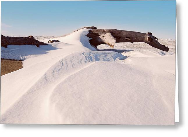 Snow Drifts Greeting Cards - Snowdrift  Greeting Card by Michael Peychich