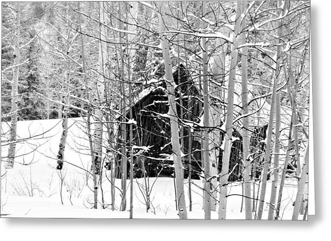 Outbuildings Greeting Cards - Snowed In Greeting Card by LeAnne Perry