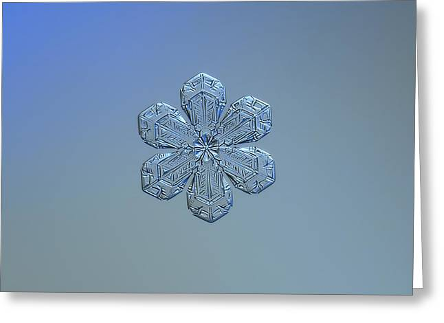 Snowflake Photo - Forget-me-not Greeting Card by Alexey Kljatov