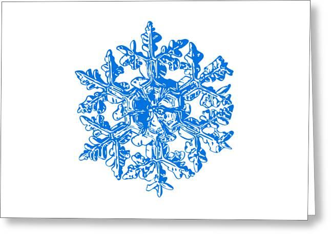 Snowflake Vector - Gardener's Dream White Version Greeting Card by Alexey Kljatov