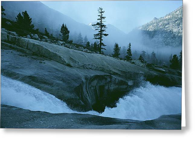 Kings Canyon National Park Greeting Cards - Snowmelt Thunders Down Woods Creek High Greeting Card by Sam Abell