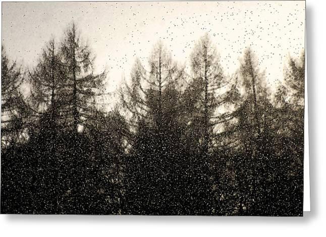 Snowstorm Digital Art Greeting Cards - Snowstorm Greeting Card by Michael Mogensen