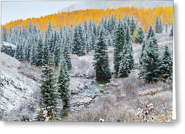 Snowy Autumn Scene Greeting Card by Teri Virbickis