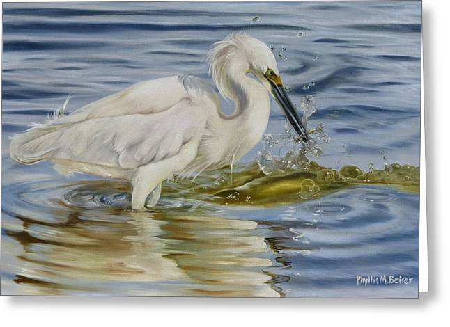Hunting Bird Greeting Cards - Snowy Egret Hunting Shrimp Greeting Card by Phyllis Beiser