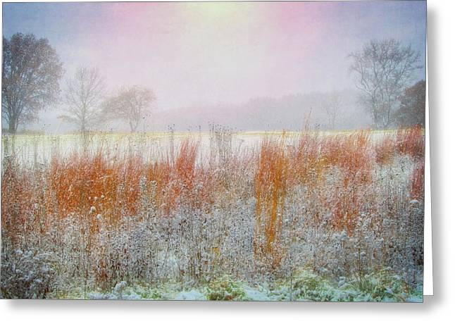 Snowy Field - Winter At Retzer Nature Center  Greeting Card by Jennifer Rondinelli Reilly - Fine Art Photography
