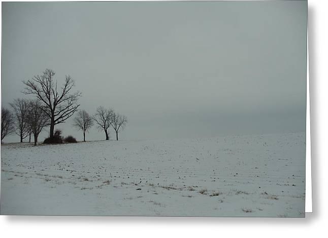 David Junod Greeting Cards - Snowy Illinois Field Greeting Card by David Junod
