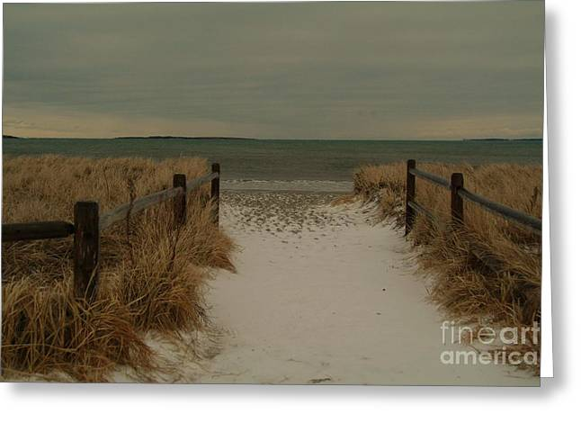 Maine Beach Digital Art Greeting Cards - Snowy Maine Beach Greeting Card by Alberta Brown Buller