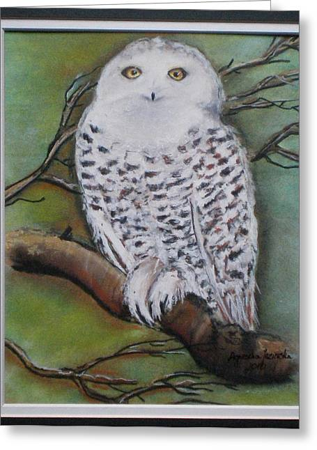 Snowy Night Night Greeting Cards - Snowy owl Greeting Card by Agnieszka Jezierska-Drutel