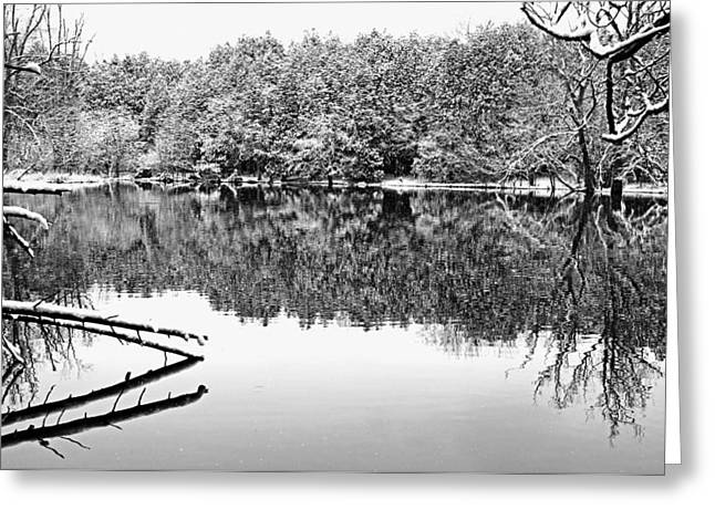 Wintry Greeting Cards - Snowy River Greeting Card by Debbie Oppermann
