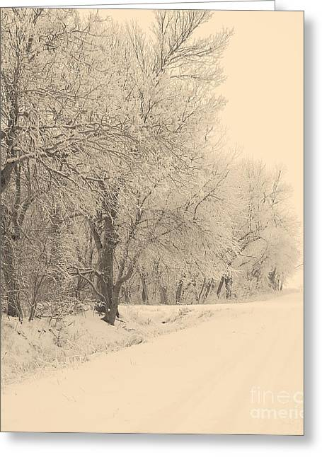 Snow Scenes Greeting Cards - Snowy Road Greeting Card by Julie Lueders