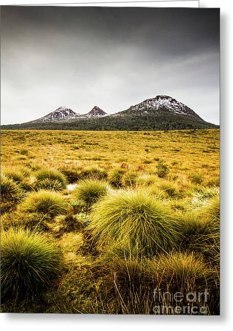 Snowy Tasmania Mountain Top Greeting Card by Jorgo Photography - Wall Art Gallery