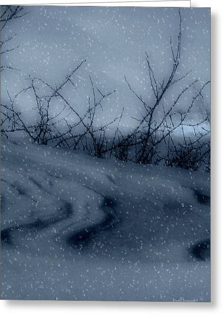 Snowstorm Digital Art Greeting Cards - Snowy Tranquility Greeting Card by Kenneth Krolikowski