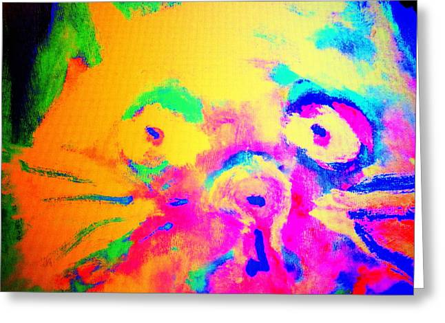 Come Look At My Amazing Cat, She Is So Colorful And Fat    Greeting Card by Hilde Widerberg