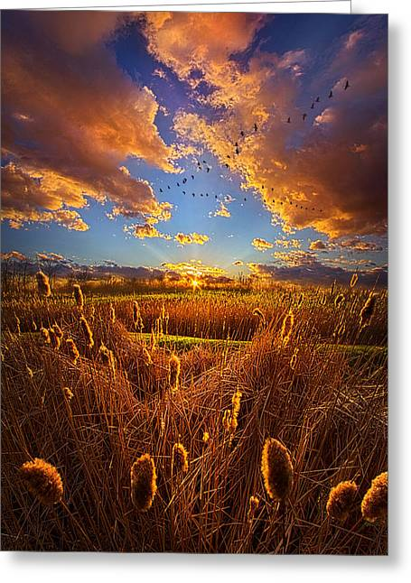 So Long I Can't Remember Greeting Card by Phil Koch