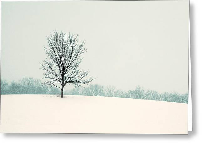 So Silent Greeting Card by Todd Klassy
