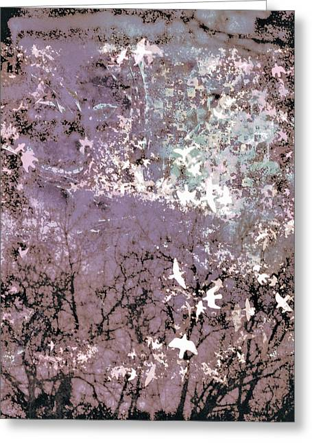 Soar Greeting Card by Susan Maxwell Schmidt