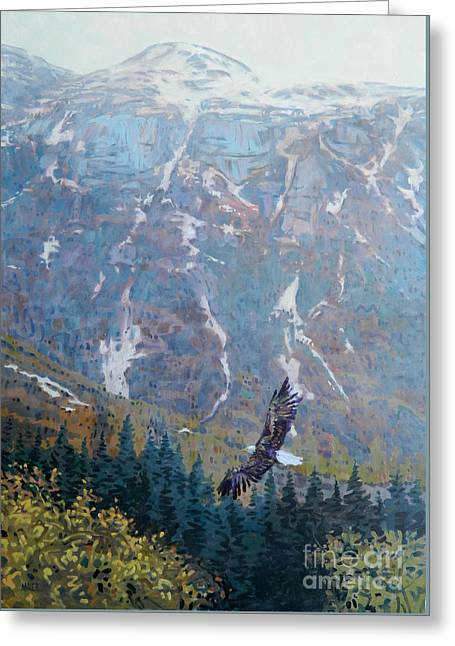 Soaring Eagle Greeting Card by Donald Maier
