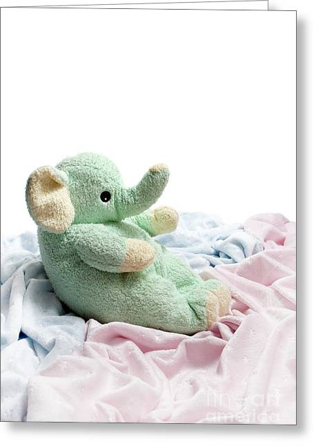Soft And Cuddly Greeting Card by Jeannie Burleson