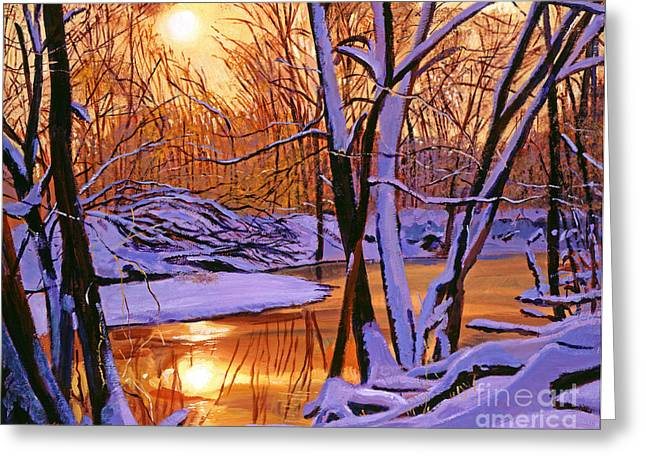 Winter Sunset Greeting Cards - Soft Winter Light Greeting Card by David Lloyd Glover